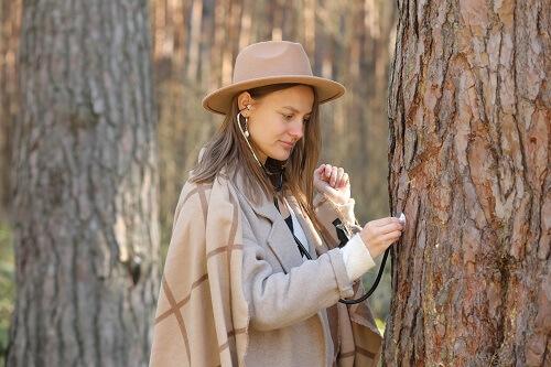 אלון גיזום - שיקום עצים